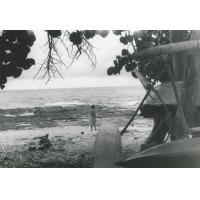 Makatea. Sur la plage