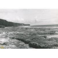 """Makatea, la falaise et la """"plage"""" de corail"""