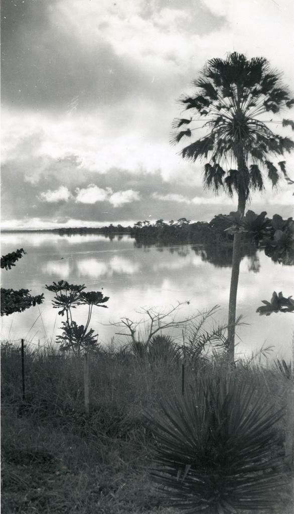 Matin d'orage à Ngomo, l'Ogooué vue de la véranda de la maison missionnaire, vers l'est