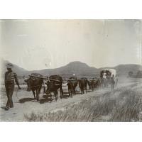 Notre premier voyage en wagon, en route vers Morija