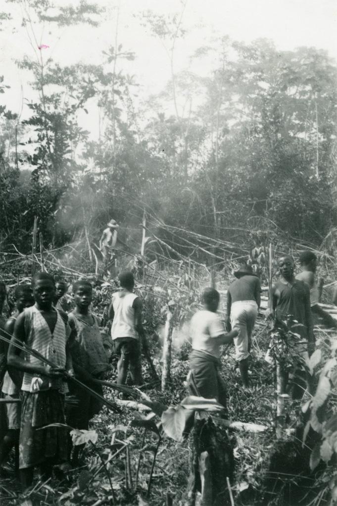 On brûle une plantation