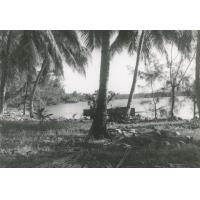Paysage à Arue, Tahiti