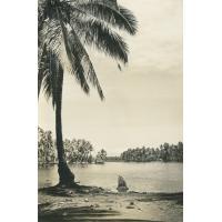 [Paysage de Tahiti]