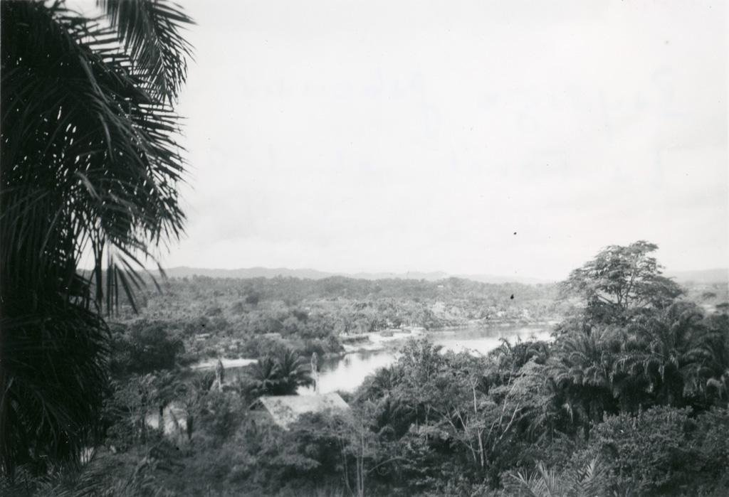 Paysage gabonais - La forêt et l'Ogooué
