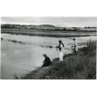 Pêcheurs à la ligne
