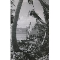 Pirogue à voile aux Iles Sous-le-Vent