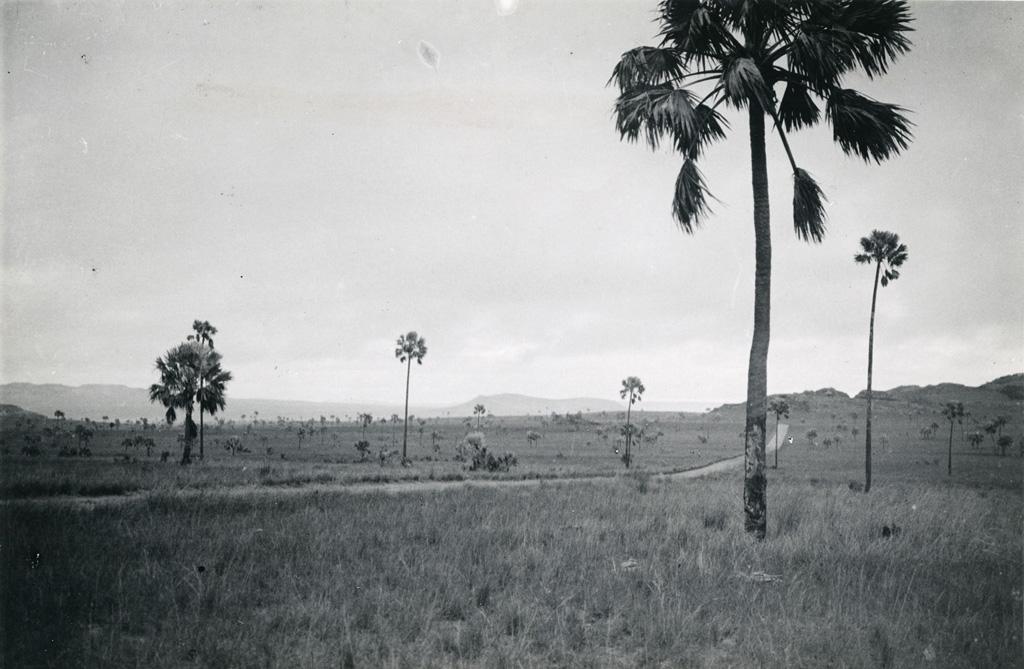 Plaines de l'Horombe, Centre Sud