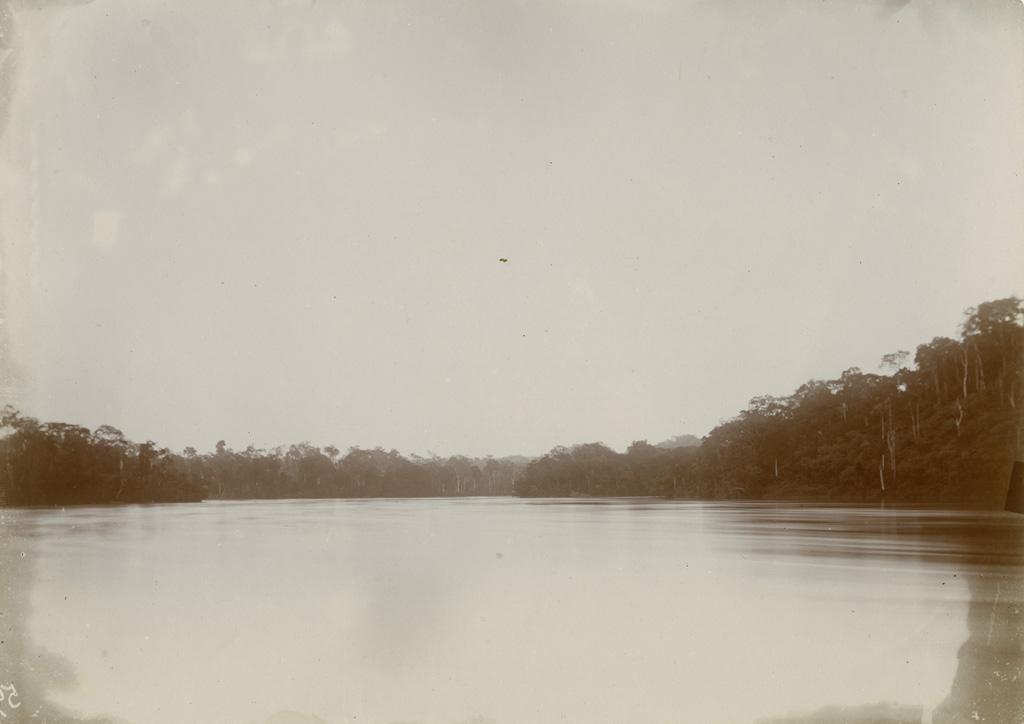 Pointe de l'île de Talagouga en amont