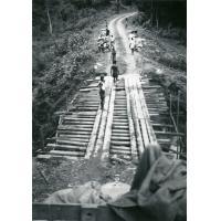 Pont de bois sur la route Oyem - Ndjolé