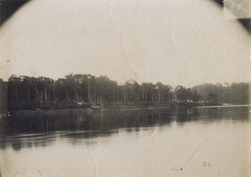 Première île de N'Djolé (aval)