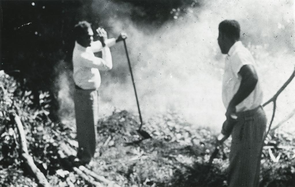 Préparation du bougna : les hommes remuent les pierres chaudes sur lesquelles vont cuire les bougna