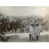Promenade publique au Cap