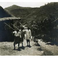Région vallée du Mangoro (Betsimisaraka)
