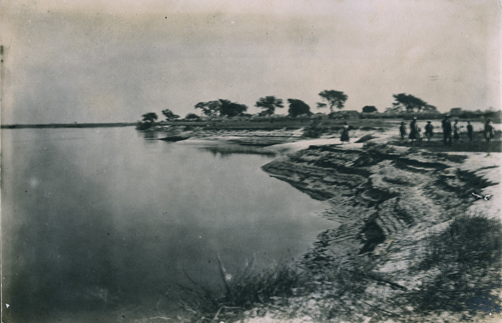Rives du fleuve Zambèze