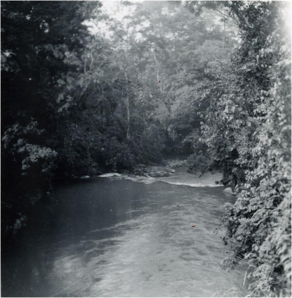[Rivière]
