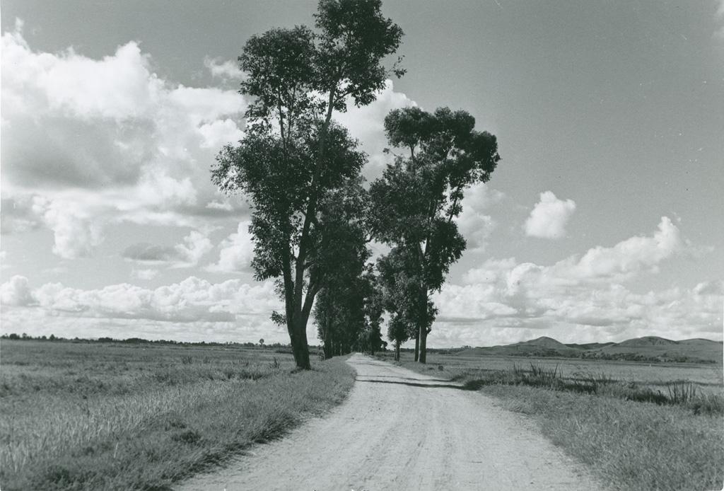 Route à travers la campagne
