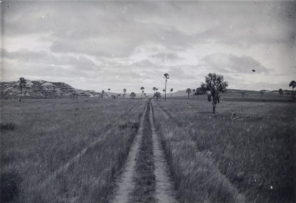 Route à travers la plaine