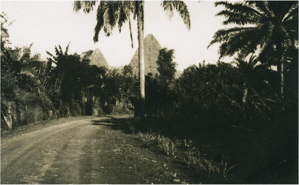 Route du Grassfield
