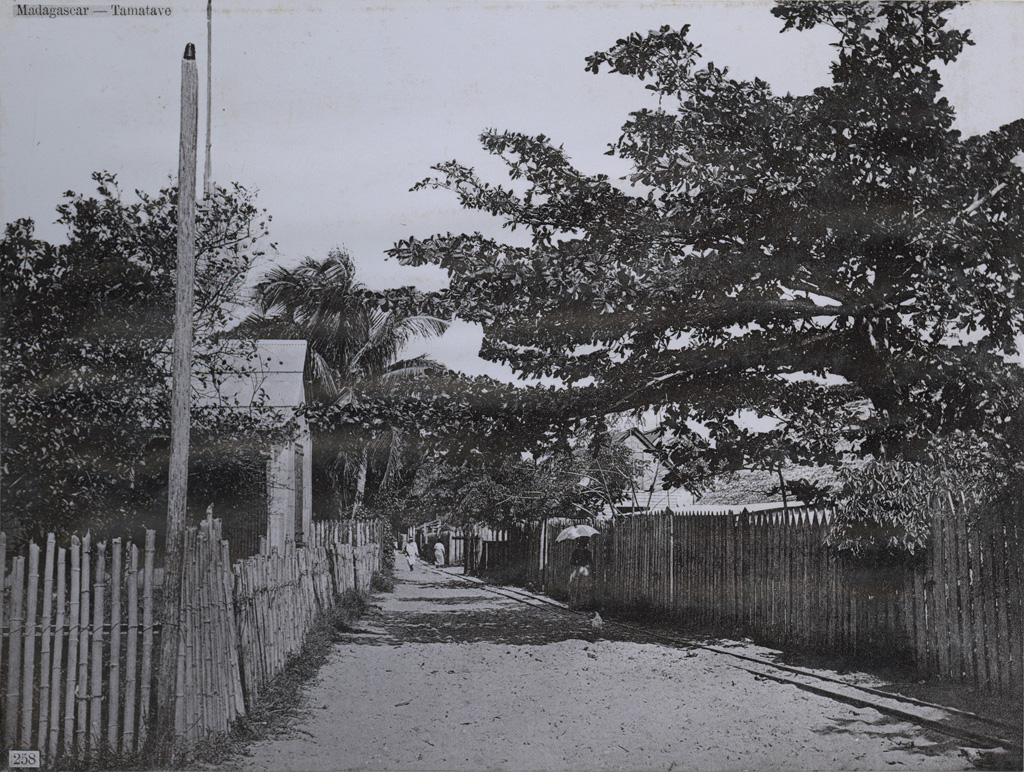 Rue allant au quartier créole