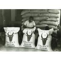 Sacs de café prêts pour l'expédition