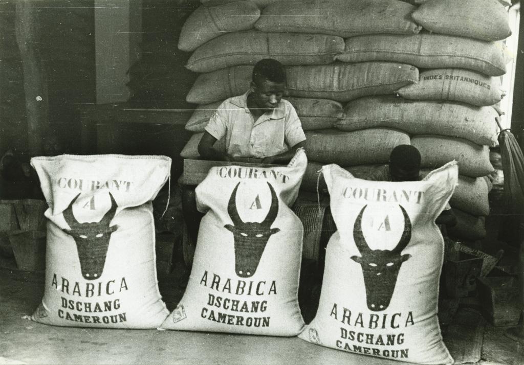 Sacs de café prêts pour l'expédition / non identifié (1950/1970)