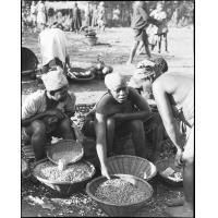 Scène de marché, tente des arachides à Balengou