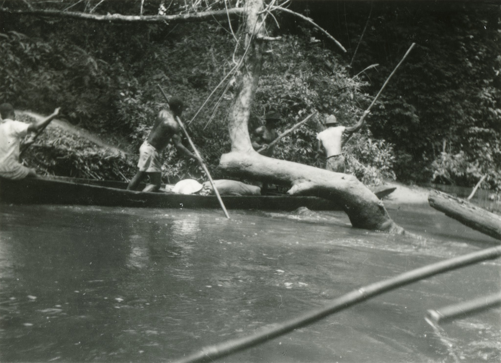 Sur la rivière Avebe