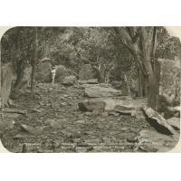 Un ancien 'marae' sur l'île de Raivavae (Archipel des Australes)