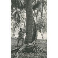 Un pêcheur au harpon (Tahiti)