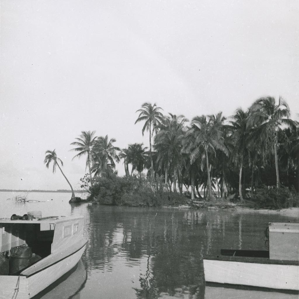 [Un petit port en Polynésie française]