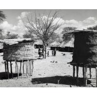 Un village en bordure du lac de Kariba