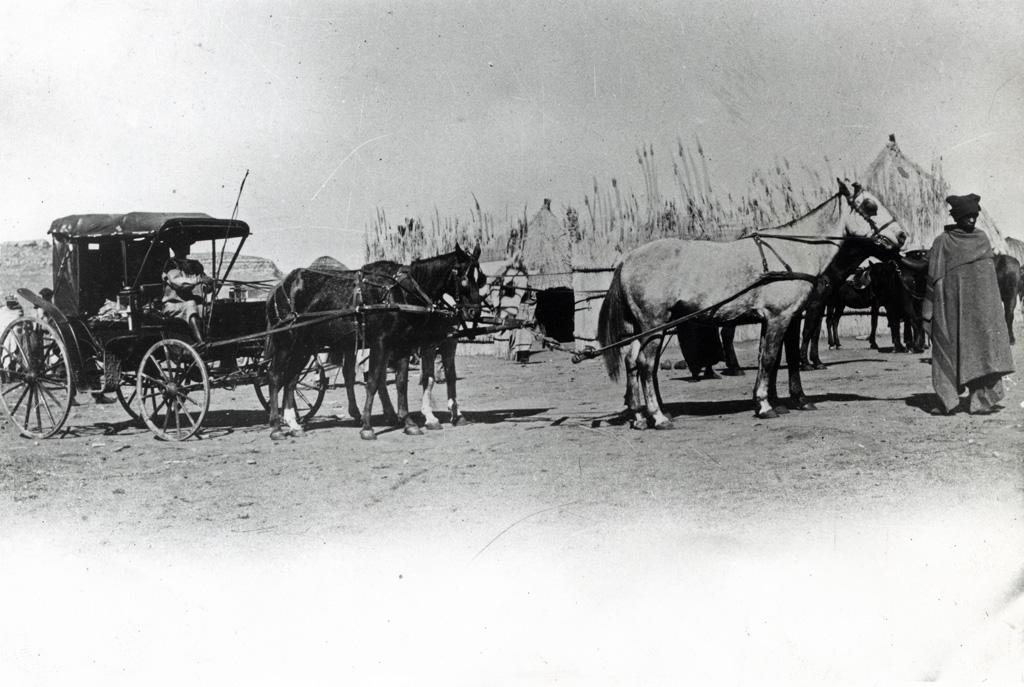 Une calèche tirée par des chevaux
