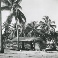 Une maison composite faite de tôle, planches et de feuilles de cocotier