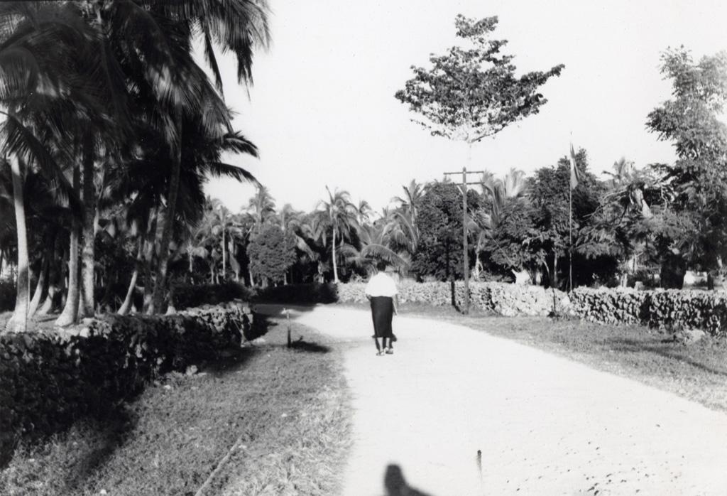 Une route de terre à Chepénéhé
