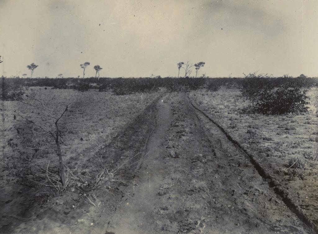 Une route de terre