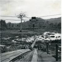 Usine des bois du Cameroun