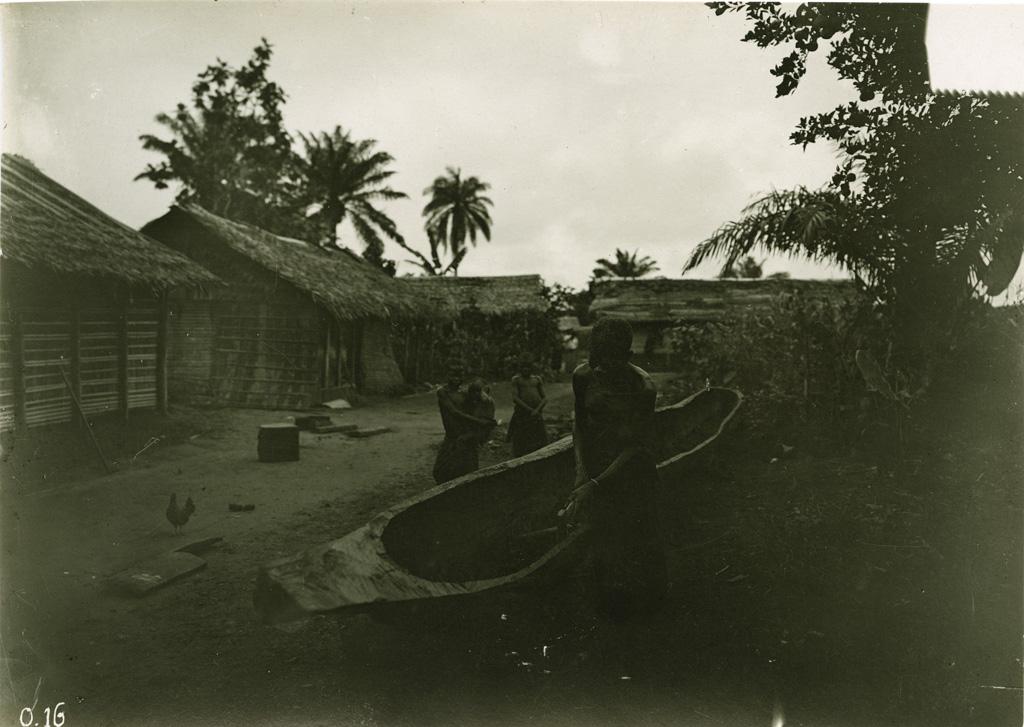 Village - cases
