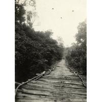 Village de brousse, pont sur un marigot, au fond Mme Christen et Irène