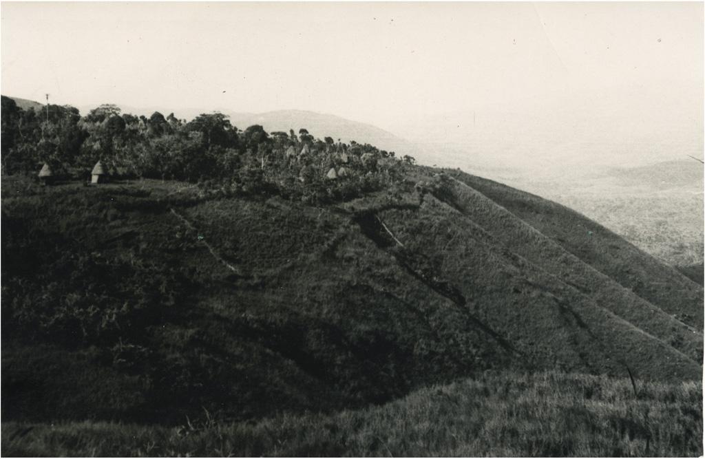 Village du Grassfield
