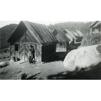 Village forestier