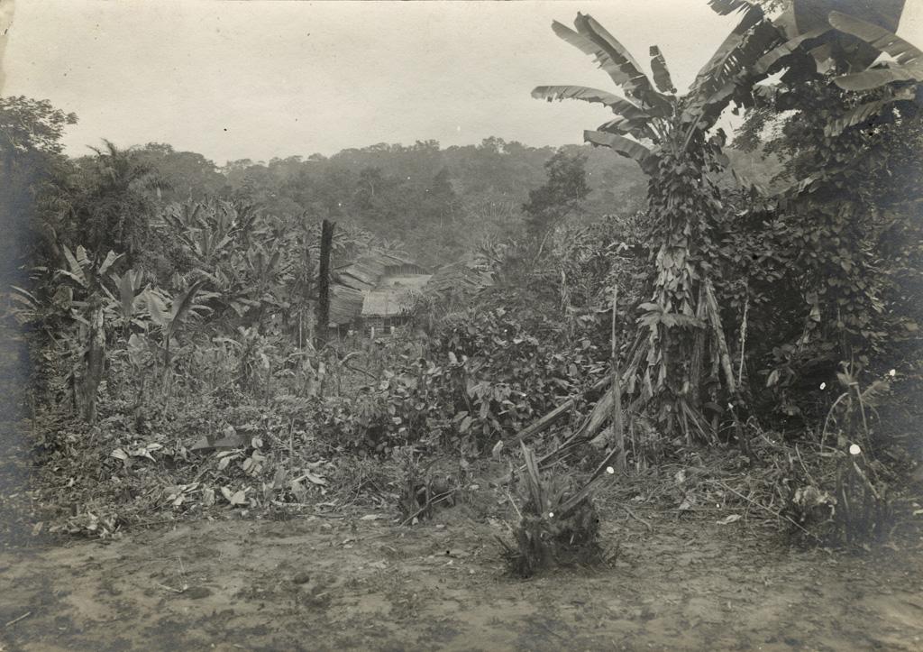 Vue d'un village pahouin derrière la station