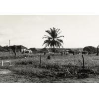 Vue de la maison missionnaire de Makokou sur la ville