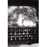 Vue du balcon du palais de Foumban