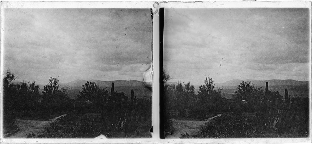 Vue [du perron d'une maison] sur un jardin et les montagnes autour de Leribe